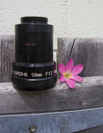 An old movie projector lens and a flower - Fun?