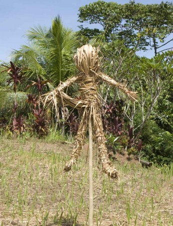 A scarecrow?  Or is it?