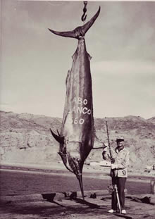 Alfred Glassell and his long-standing world record Black Marlin (1,560 lbs.) caught off Cabo Blanco, Peru in 1953