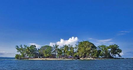 Little Pig Island