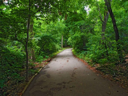 Typical Central Park path